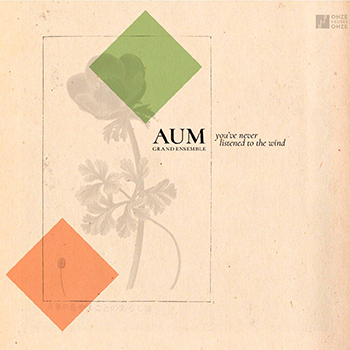aum-grand-ensemble-youve-never-listened-to-the-wind
